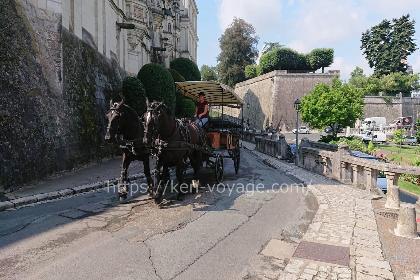 calèche à Château Royal de Blois